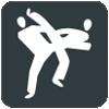 Taekwondo tijdens de Olympische Spelen 2016